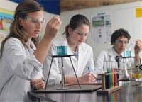 Iscrizioni a scuola: primi dati sulle scelte degli studenti
